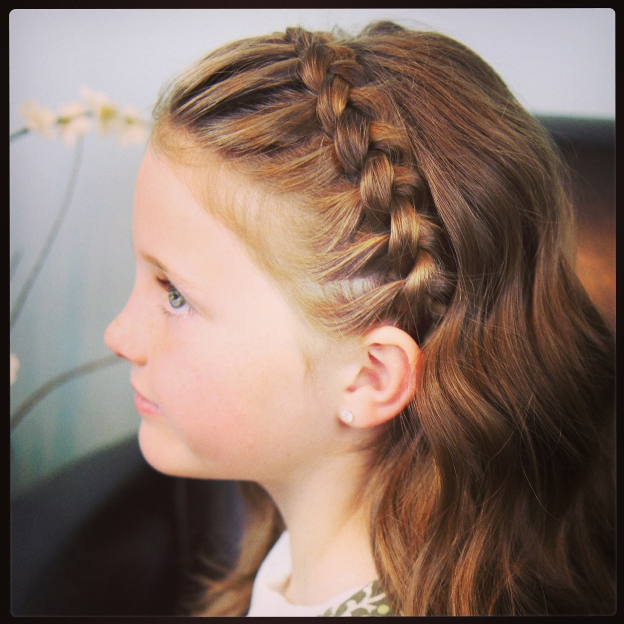 Braid Hairstyles (View 2 of 20)