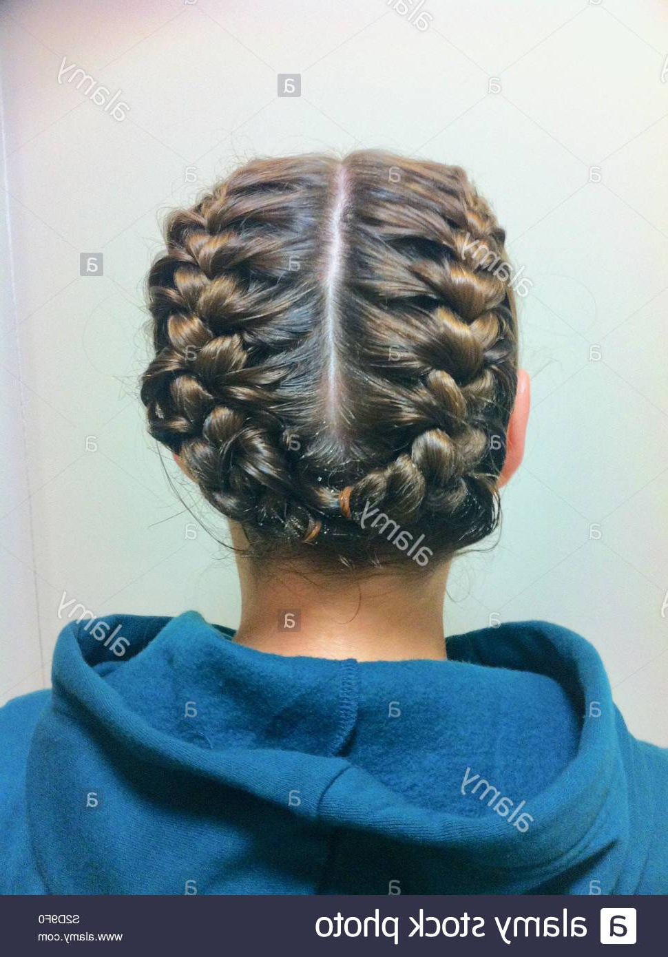 Braids Plaits Stock Photos & Braids Plaits Stock Images – Alamy Pertaining To Favorite Renaissance Micro Braid Hairstyles (View 18 of 20)