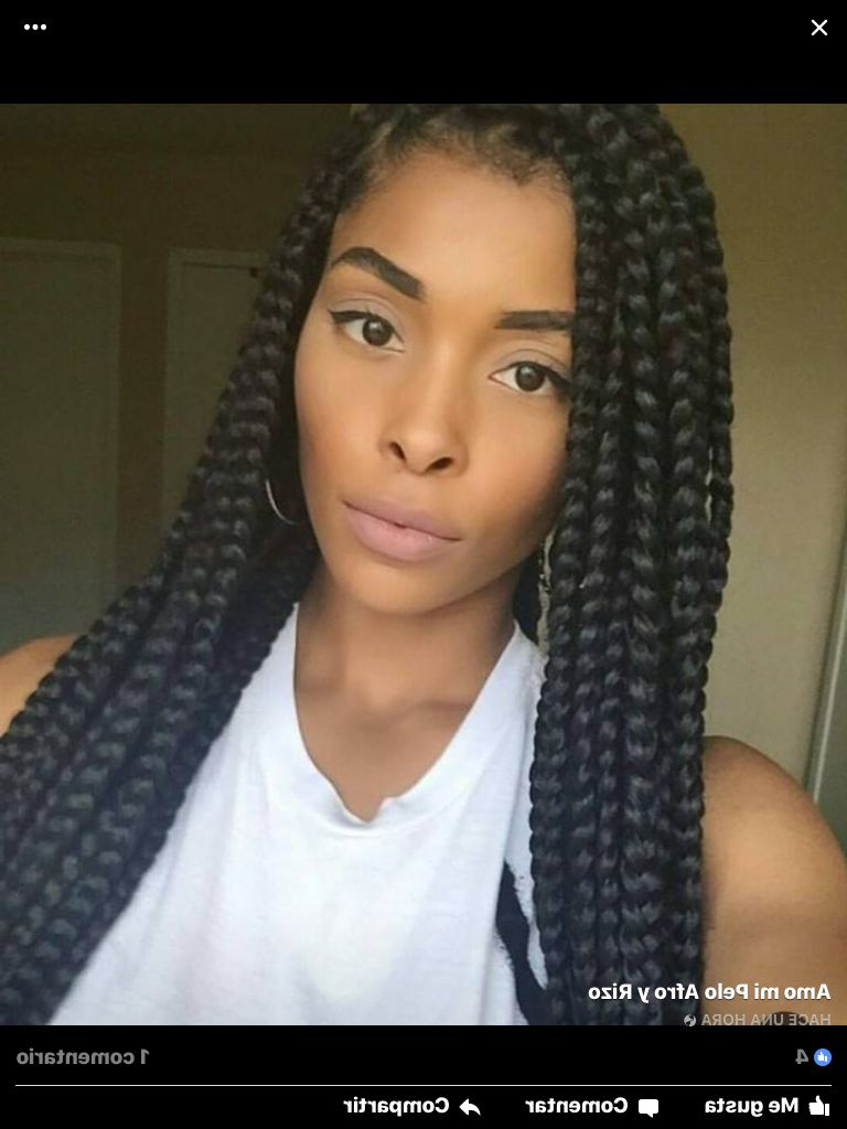 Crochet Hair Pertaining To Well Known Long Bob Braid Hairstyles With Thick Braids (View 10 of 20)