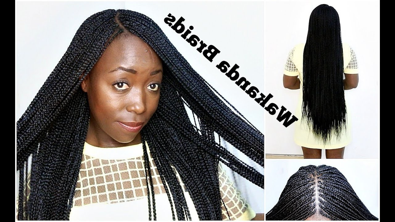 Current Side Parted Loose Cornrows Braided Hairstyles Regarding How To Braid Your Own Hair With Side & Middle Part Stepstep Tutorial  Natural Hair Wakanda Braids (View 11 of 20)