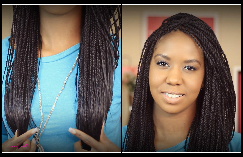 ღ Day 2 ღ 2014 Hair Growth Journey – My New Twist!!! – How Inside Well Known Micro Twist Ponytail Hairstyles (View 12 of 20)