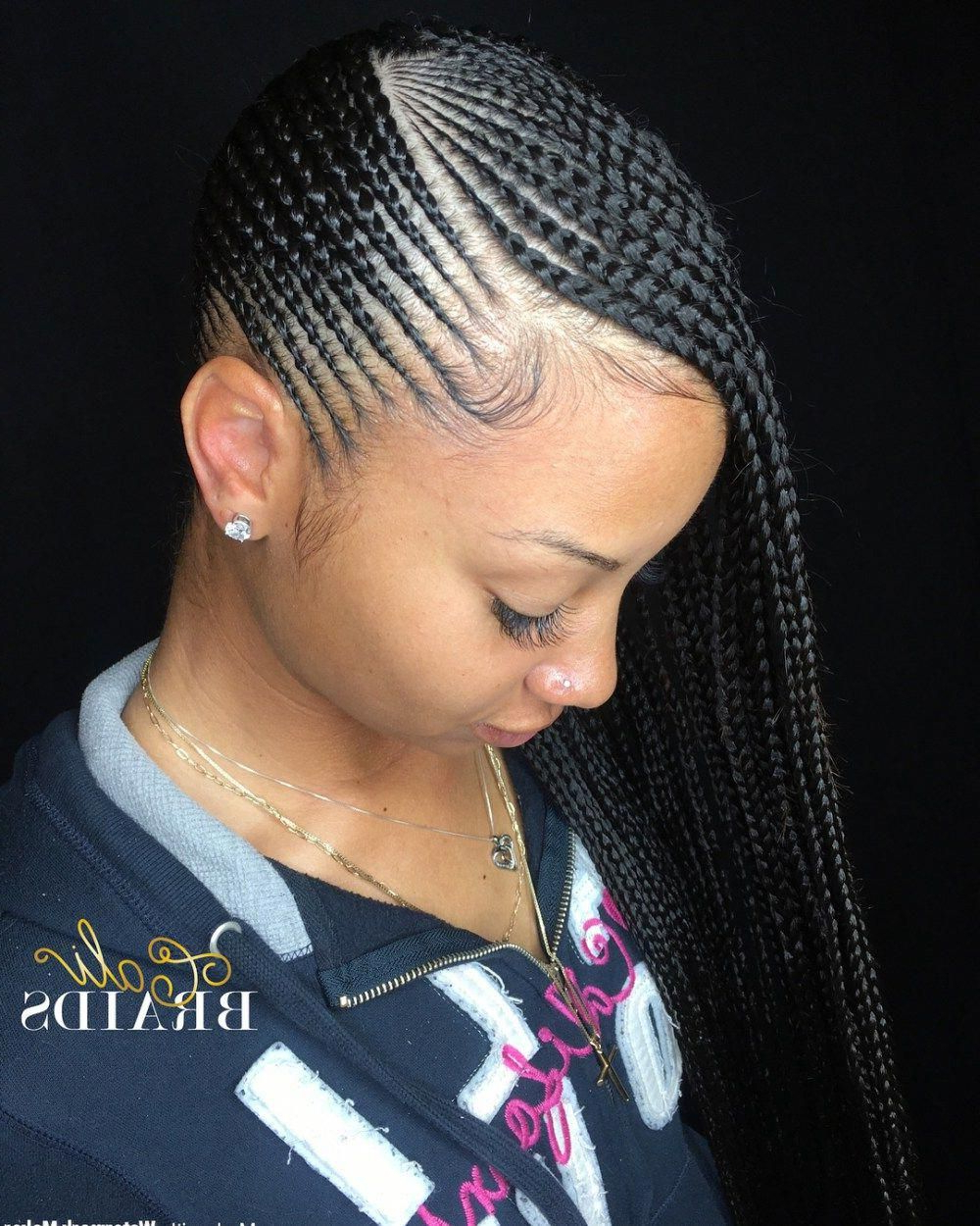 Featured Photo of Back And Forth Skinny Braided Hairstyles