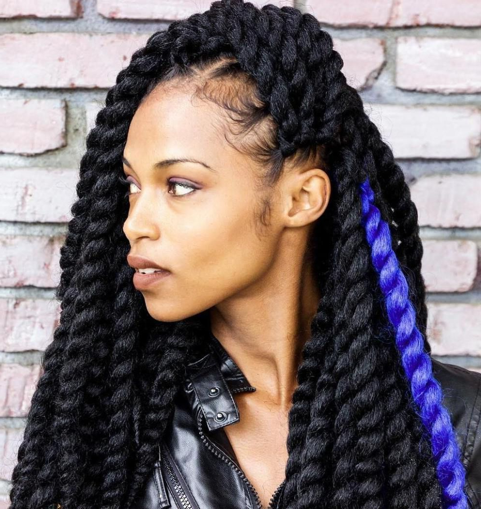 Famous Dramatic Rope Twisted Braid Hairstyles Regarding 40 Chic Twist Hairstyles For Natural Hair (View 4 of 20)