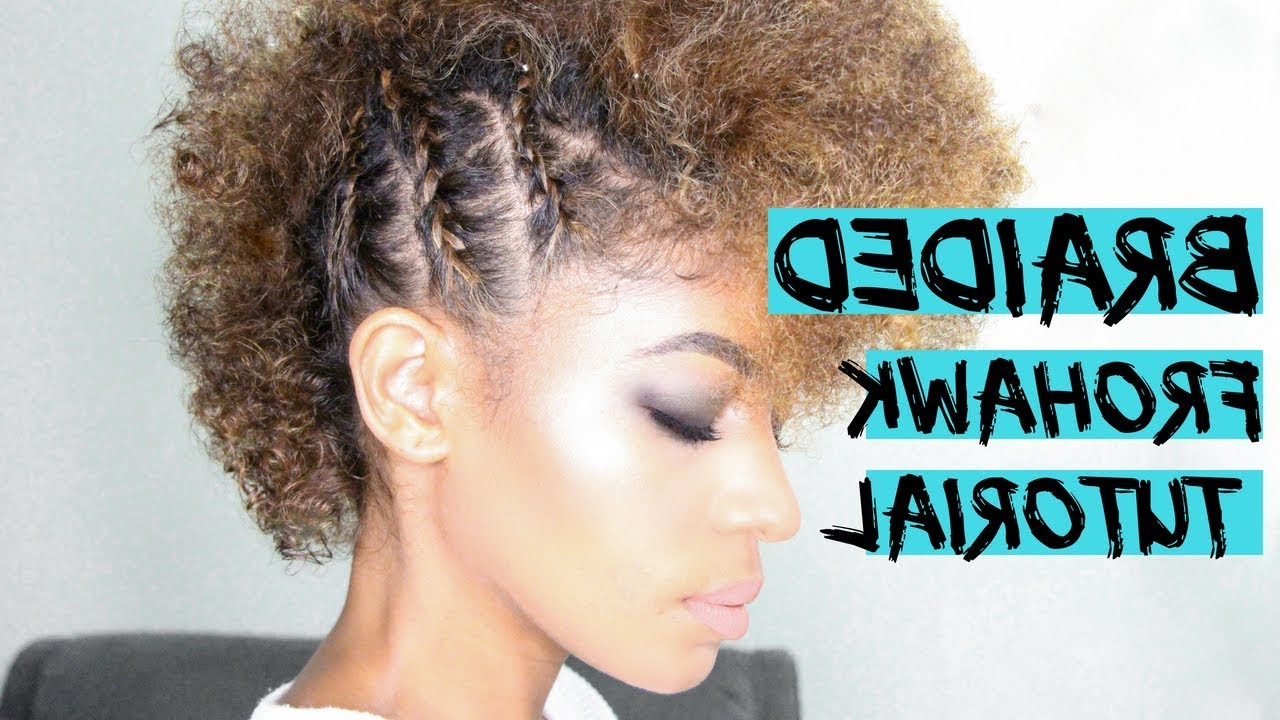 Frohawk Hairstyle: An Popular Mohawk Derivative For Curly Girls With Trendy Curly Mohawk Updo Hairstyles (View 20 of 20)
