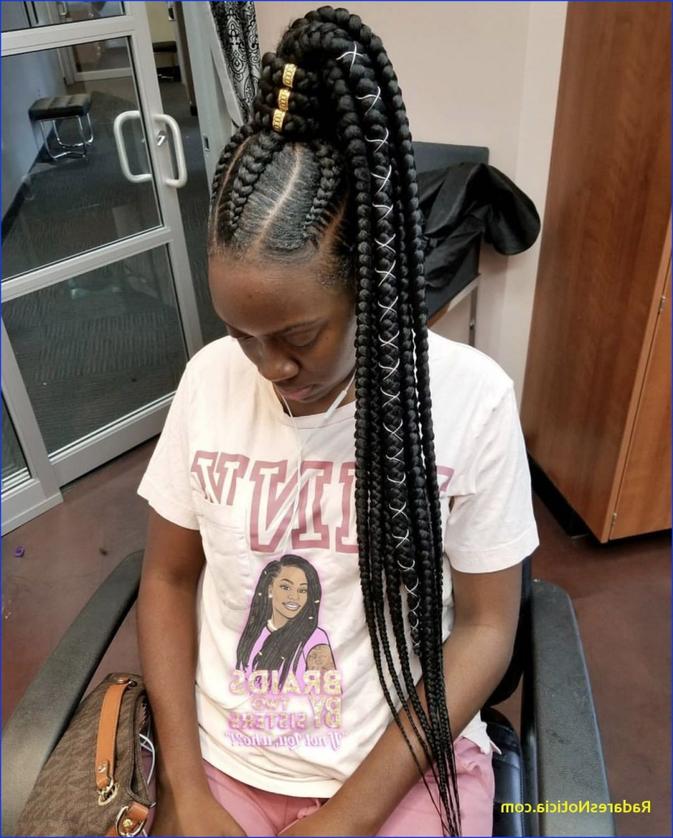 Hairstyles : Best Braided Hairstyles Pinterest Natural Throughout 2020 Black Shoulder Length Braids With Accents (Gallery 14 of 20)