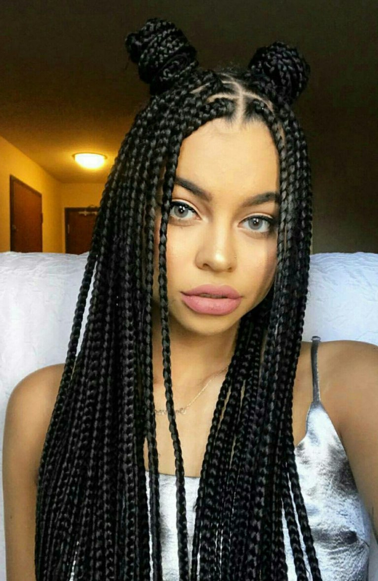 Hairstyles : Braided Hairstyles For Black Women Astounding Throughout Most Current Afro Under Braid Hairstyles (Gallery 20 of 20)