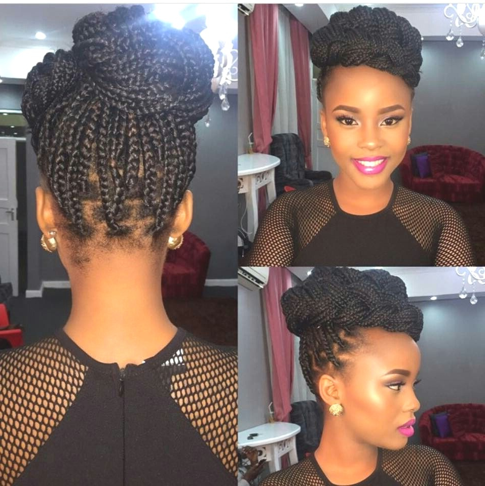 Hairstyles : Updo Hairstyles With Box Braids Astounding Half Pertaining To Most Current Box Braided Bun Hairstyles (View 16 of 20)
