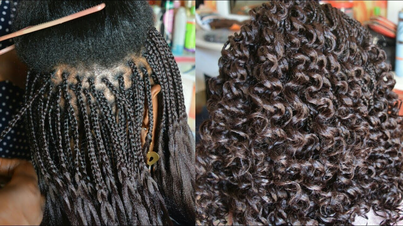 How To Box Braids / How To Curl Braids In Most Recent Micro Braids Into Ringlets (View 9 of 20)
