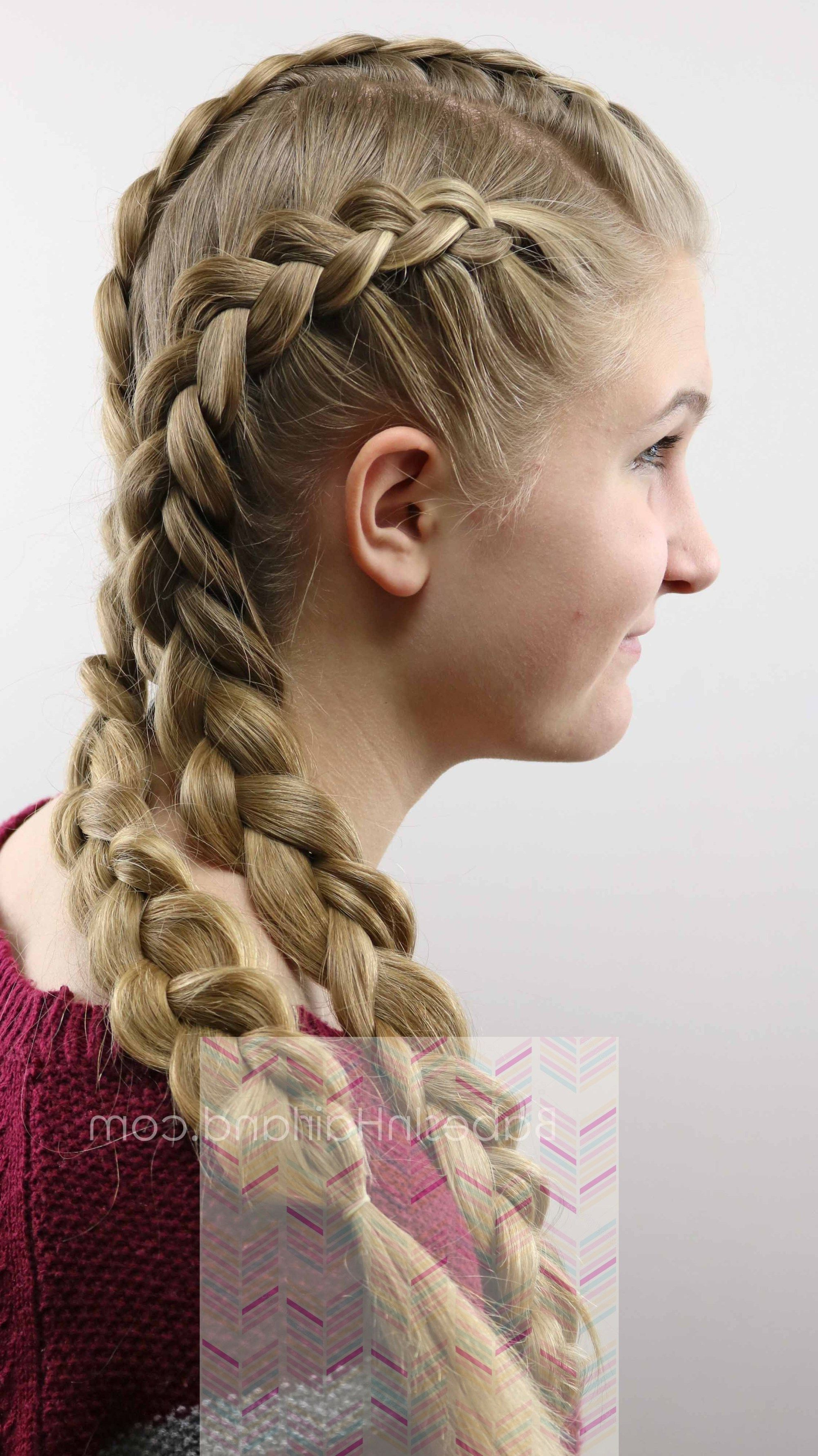 Latest Asymmetrical French Braided Hairstyles Intended For 18+ Fantastic Quick Hairstyles Ideas (Gallery 1 of 20)