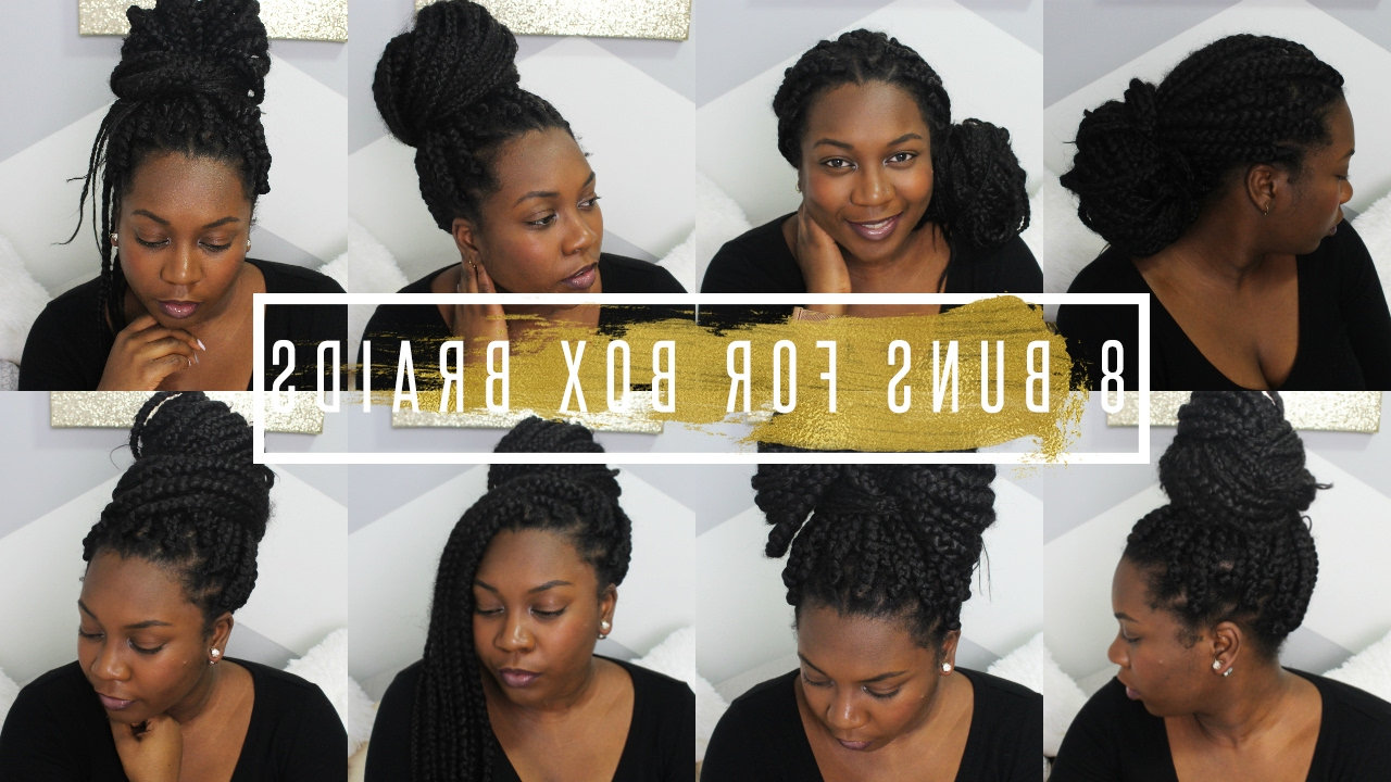 Latest Box Braided Bun Hairstyles For How I Style My Box Braids / Box Braids Bun Styles / Easy Bun Tutorial //  Hair (Gallery 4 of 20)
