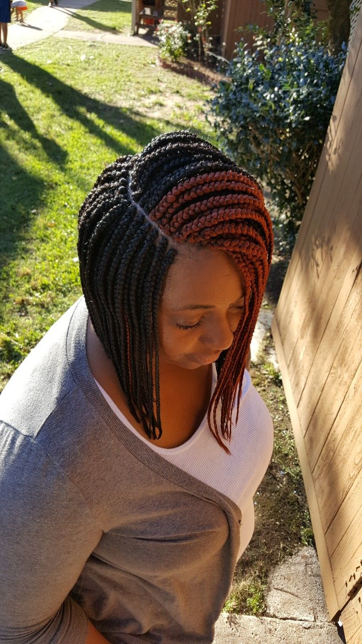 Latest Bumped And Bobbed Braided Hairstyles Pertaining To Small Box Braid Bob (View 13 of 20)