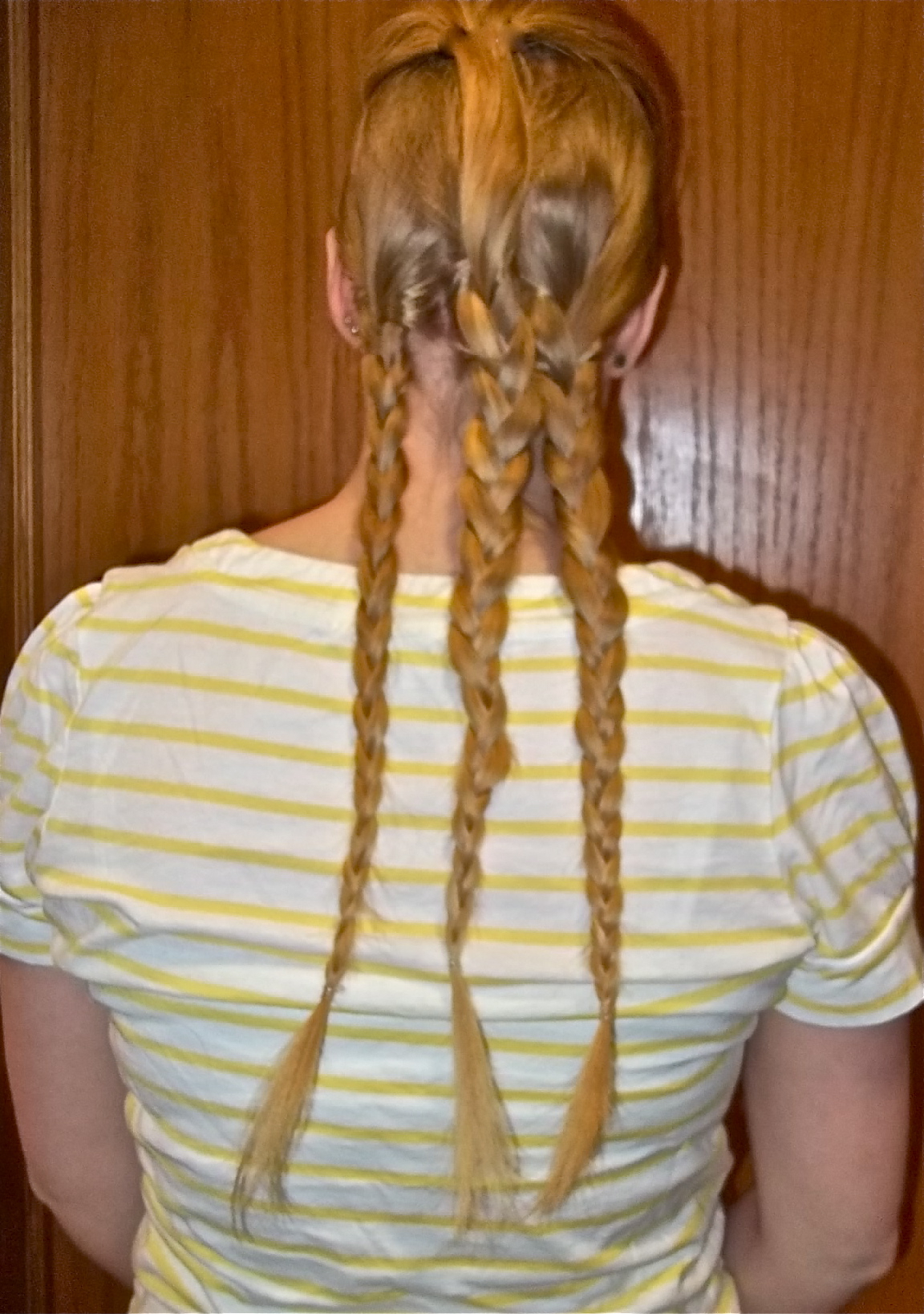 Latest Three Strand Pigtails Braided Hairstyles Pertaining To 3 Strand Braid (Gallery 20 of 20)
