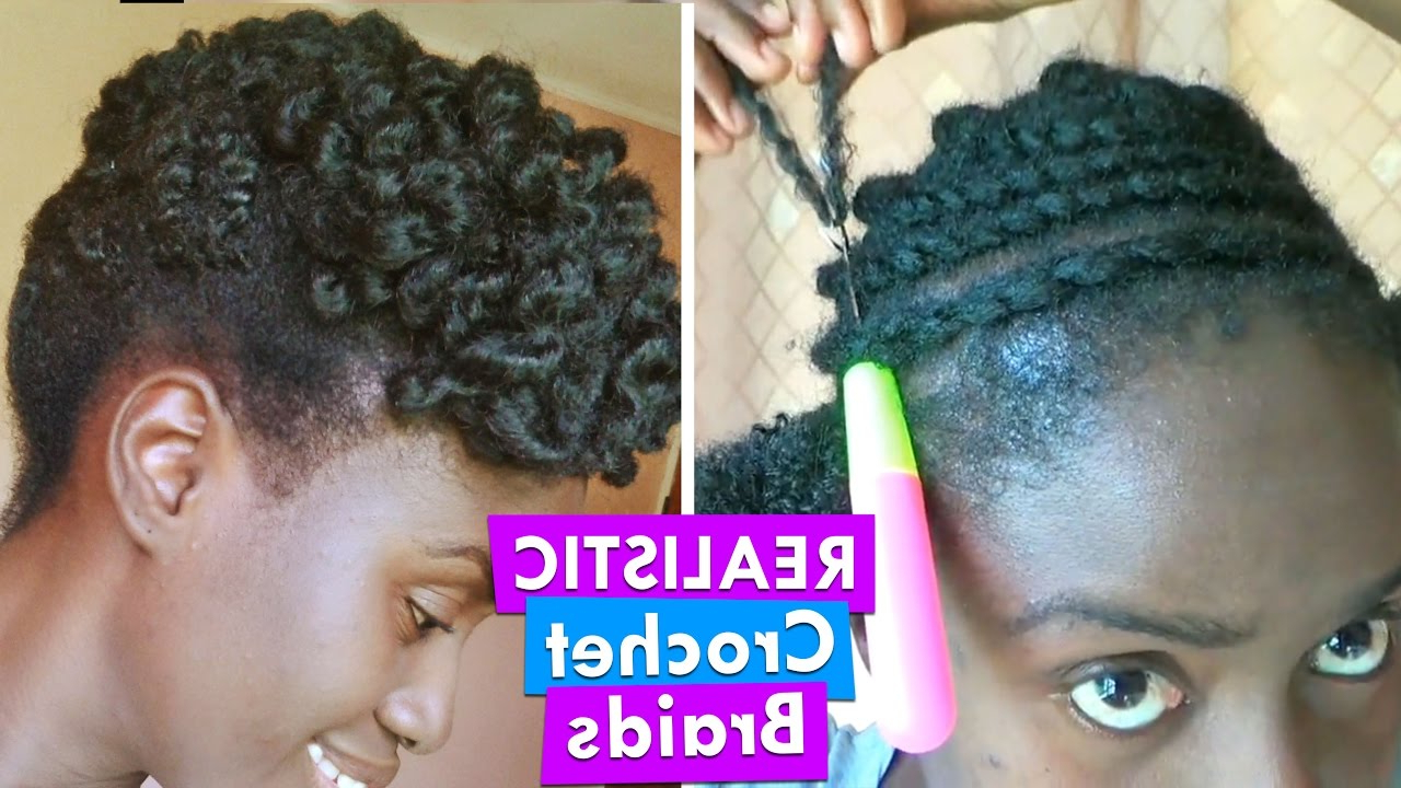 Latest Updo Hairstyles With 2 Strand Braid And Curls Throughout Afro Kinky Crochet Braids Natural Hairstyle On A 2 Strand Twist Out Pin Up (View 10 of 20)