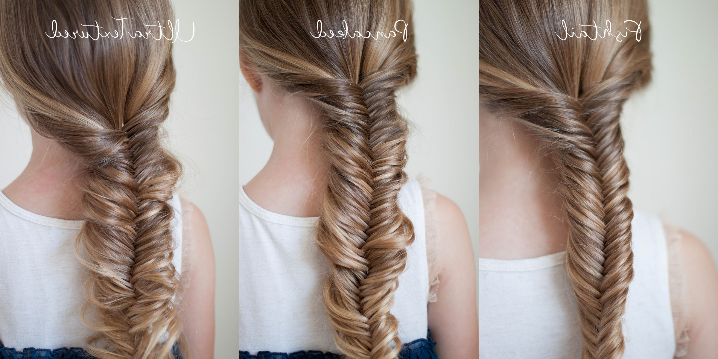 Most Current Micro Braids In Side Fishtail Braid Pertaining To Ways To Wear A Fishtail Braid (View 12 of 20)