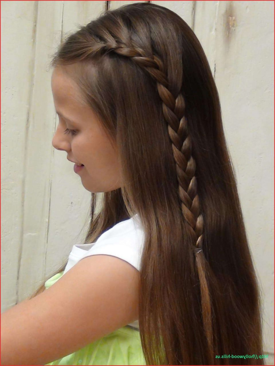 Most Recent Asymmetrical French Braided Hairstyles In Braid Hairstyles For Long Hair — Find Hair Cuts (View 12 of 20)
