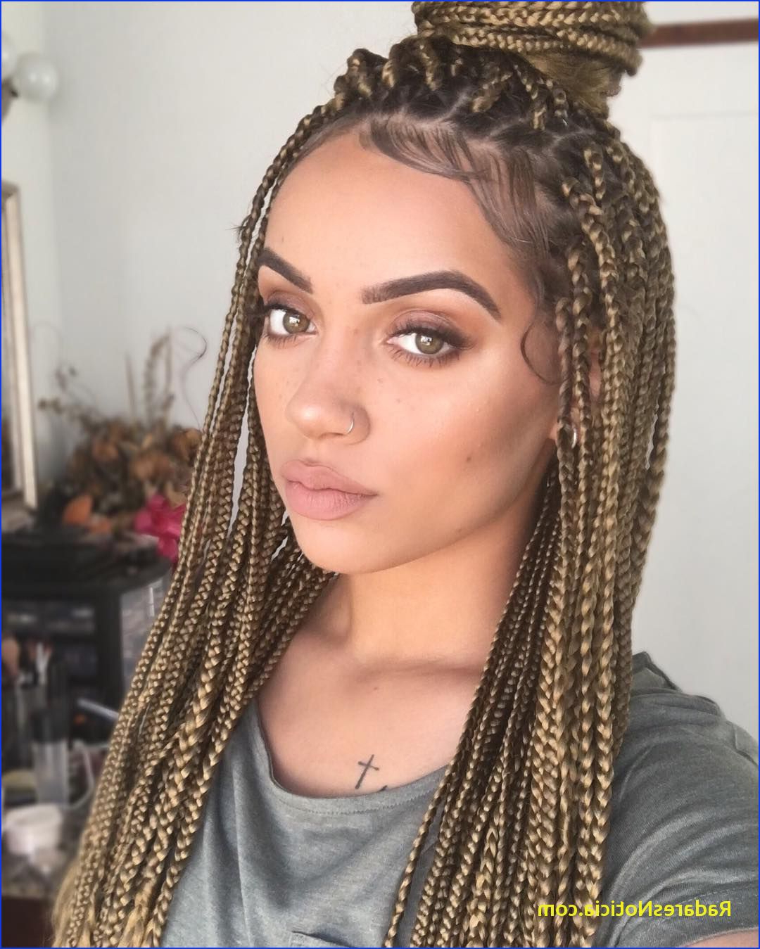 Most Recent Blonde Braid Hairstyles Inside Blonde Black And Brown Box Braids – Best Menu Template Design (View 20 of 20)