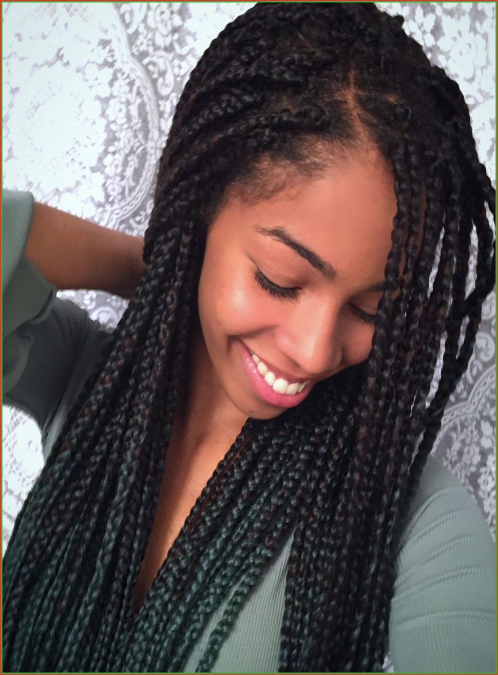 Most Recently Released Long Bob Braid Hairstyles With Thick Braids Throughout Fashion : Braided Updo Hairstyles For Black Hair Engaging (View 17 of 20)