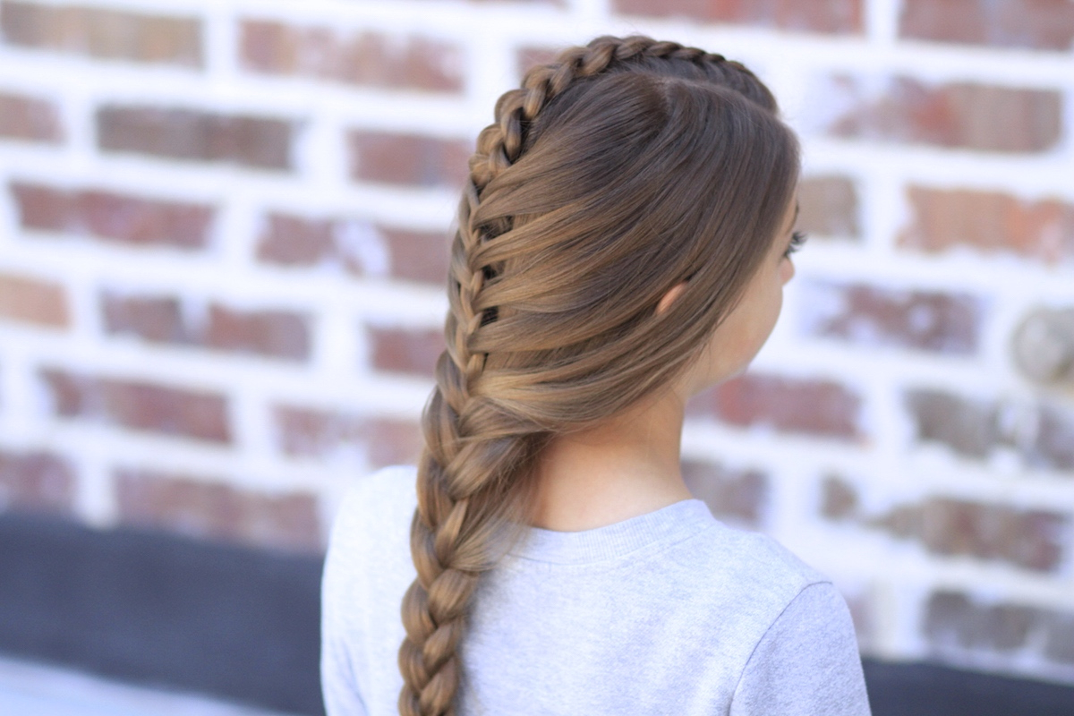Most Recently Released Three Strand Pigtails Braided Hairstyles With Peek A Boo Tuxedo Braid (View 12 of 20)