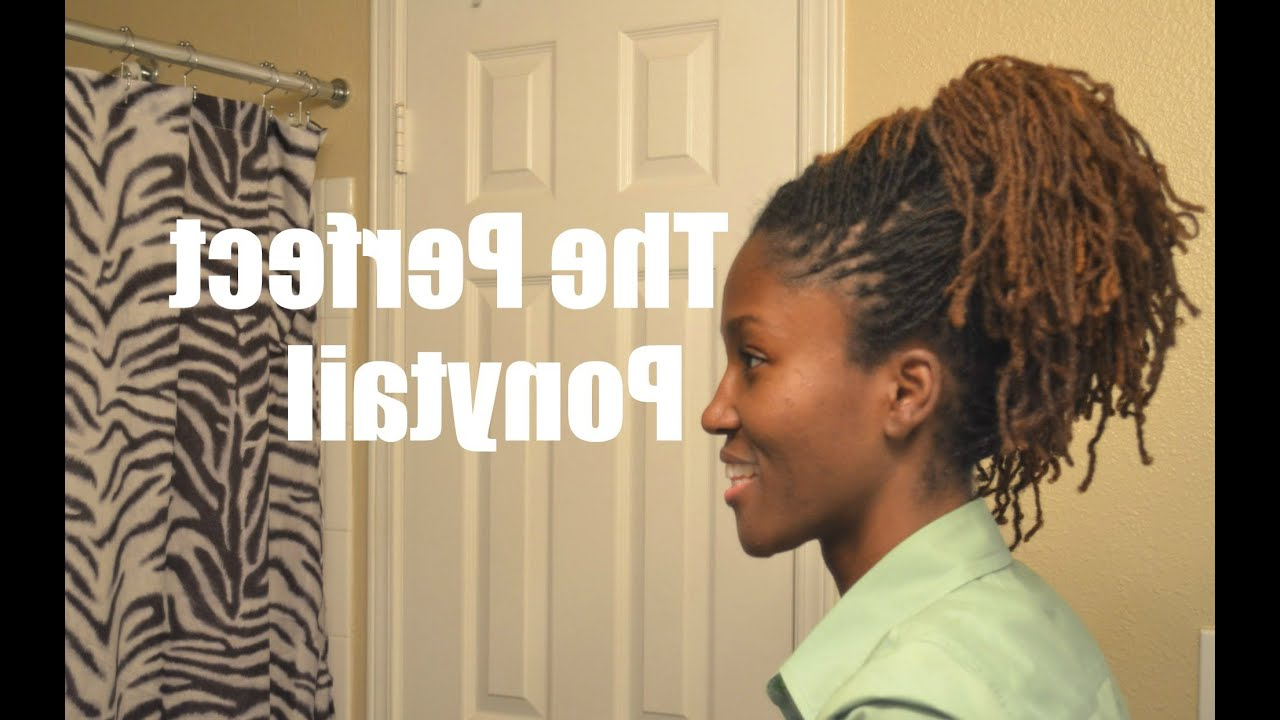 Most Recently Released Zebra Twists Micro Braid Hairstyles In Loc Style Tutorial: The Perfect Ponytail (View 11 of 20)