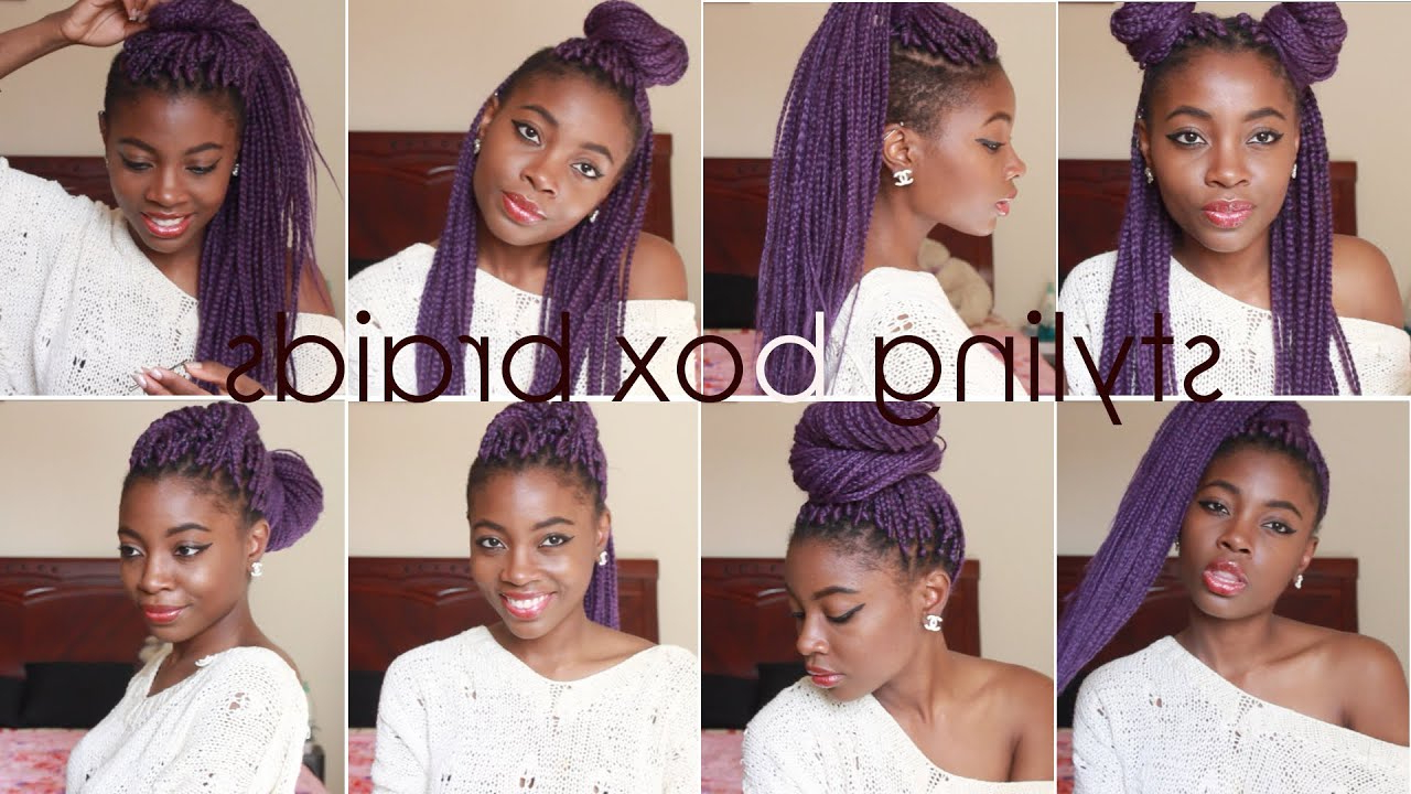 Most Up To Date Box Braided Hairstyles Inside How To Style Box Braids (View 19 of 20)