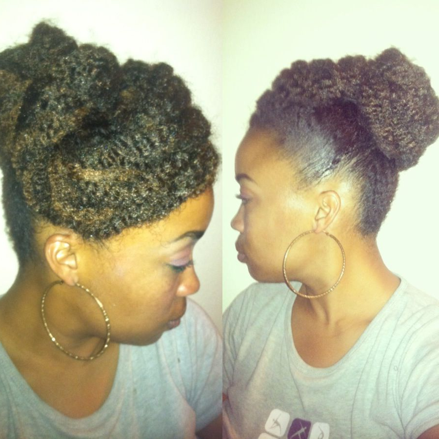 Natural Hair Styles (View 7 of 20)