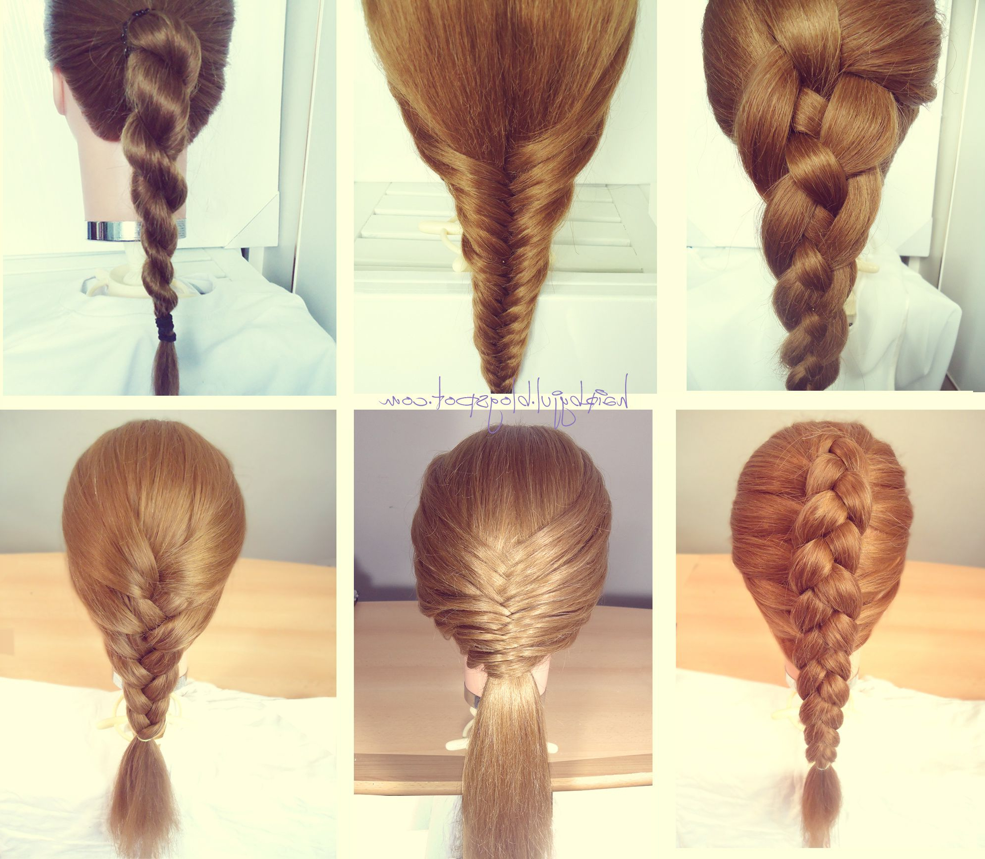 Newest Rope And Fishtail Braid Hairstyles Throughout Braid Hairstyles, Dutch Braid, French Braid, Rope Braid (View 4 of 20)