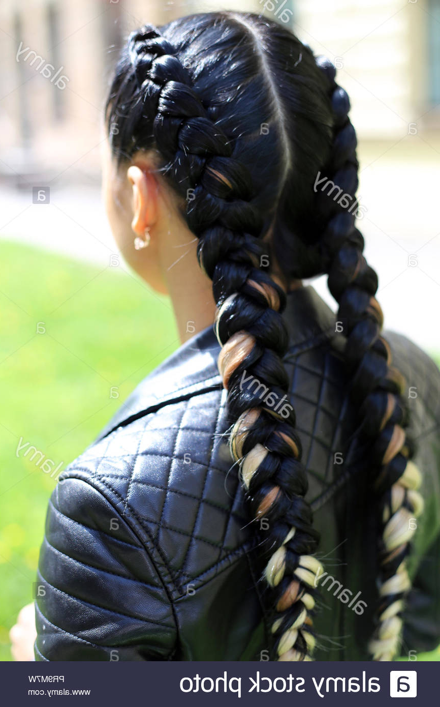 Newest Thick And Thin Braided Hairstyles Inside Designer Hairstyle Of Thick And Thin Braids, Youth Style (View 10 of 20)