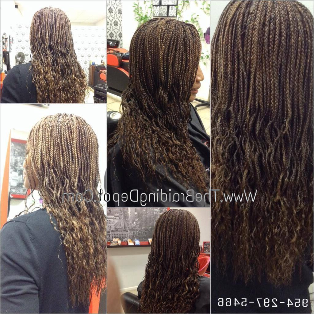 Pin On Braids * Twist *dreads Regarding Best And Newest Highlighted Invisible Braids With Undone Ends (View 15 of 20)
