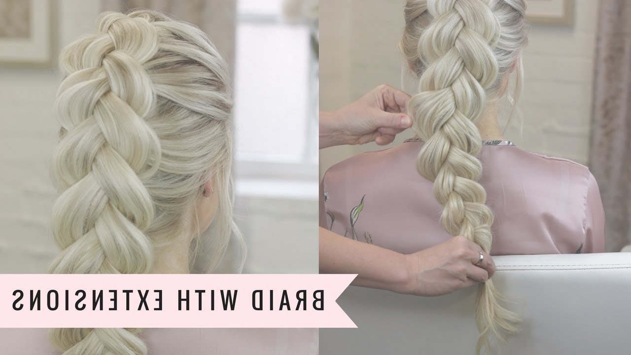 Popular Double Rapunzel Side Rope Braid Hairstyles In How To Braid With Clip In Hair Extensions (View 7 of 20)