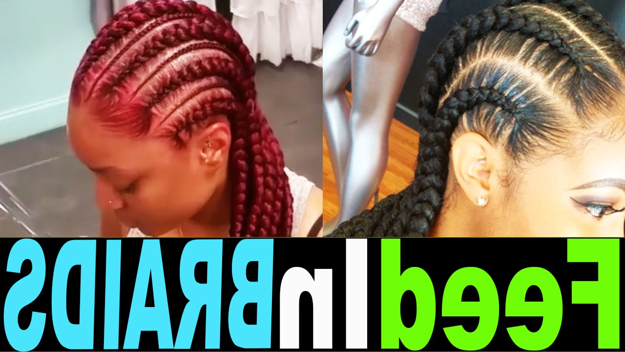 Popular Thin And Thick Cornrows Under Braid Hairstyles With Regard To Braid Styleslegendary Media (View 17 of 20)