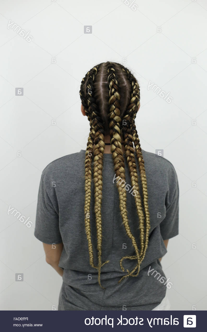 Preferred Thick Wheel Pattern Braided Hairstyles For Teenager Dreadlocks Stock Photos & Teenager Dreadlocks Stock (View 15 of 20)