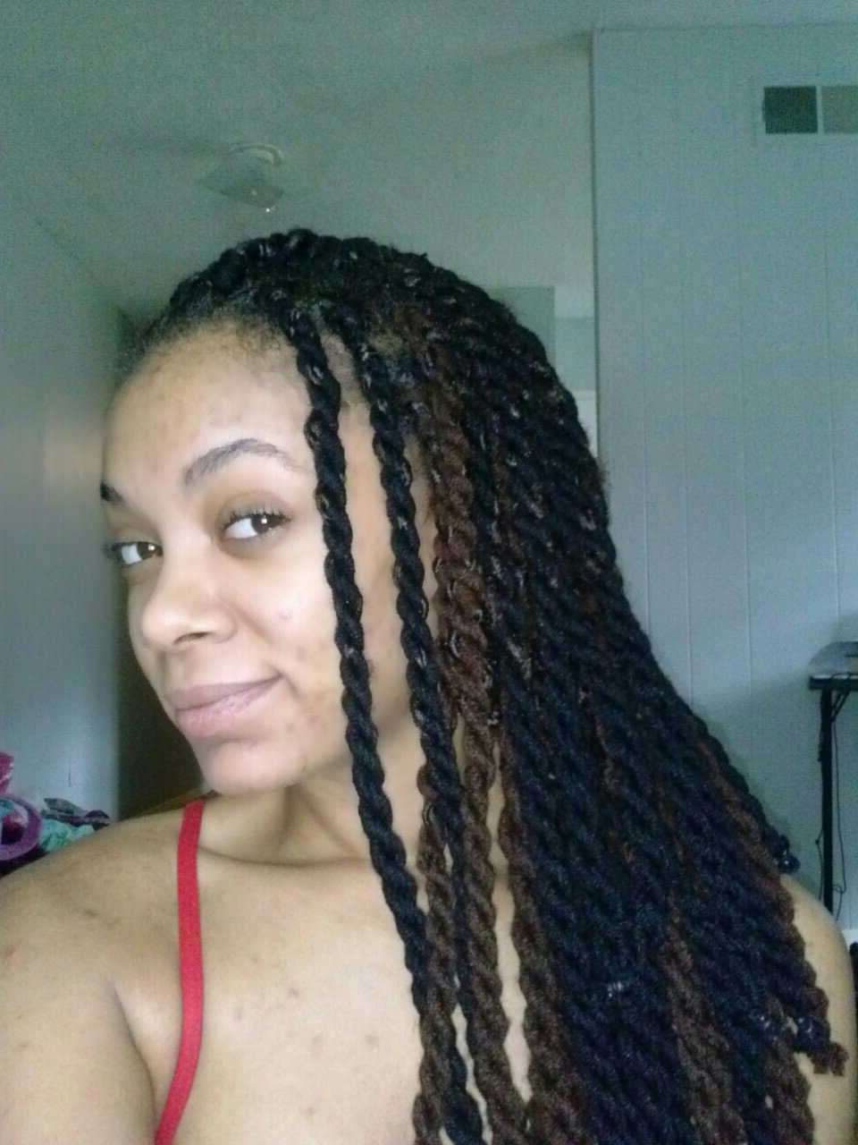 Protective Styling Challenge Ii Update // Two Tone Chunky Within 2020 Very Thick And Long Twists Yarn Braid Hairstyles (View 17 of 20)