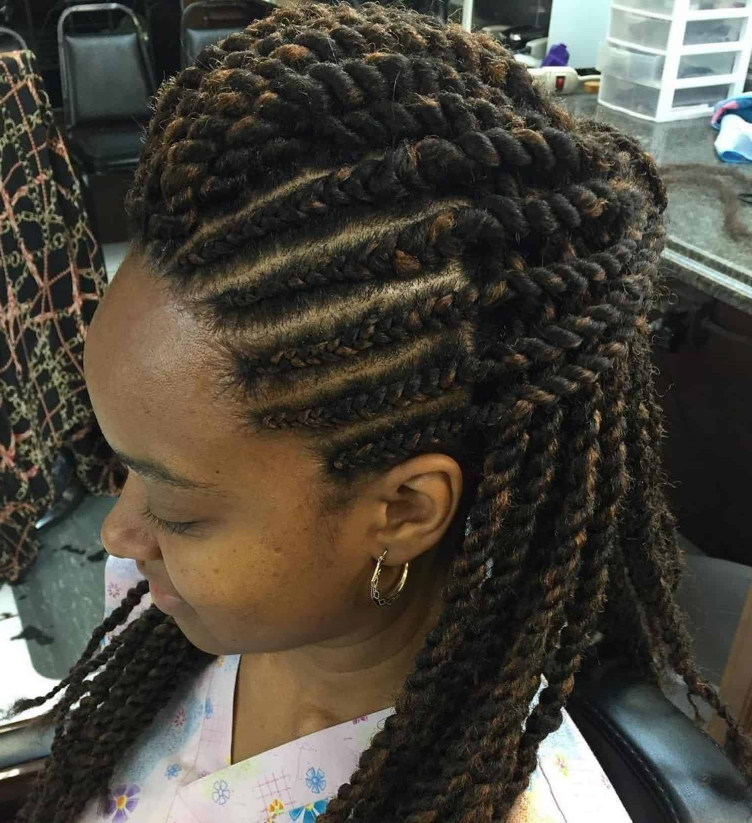 Recent Skinny Yarn Braid Hairstyles In A Half Updo Throughout 30 Black Braided Hairstyles You Can Try For A Fancy (View 15 of 20)