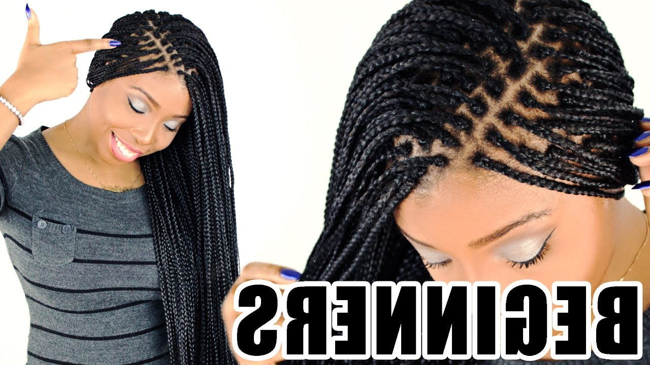 Small Box Braids Pertaining To Fashionable Layered Micro Box Braid Hairstyles (View 8 of 20)