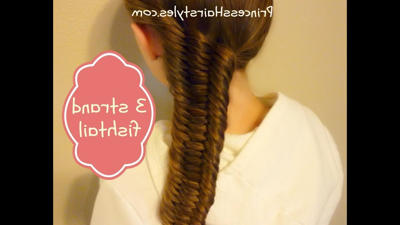 Three (3) Strand Fishtail Braid Tutorial With Fashionable Three Strand Pigtails Braided Hairstyles (View 8 of 20)