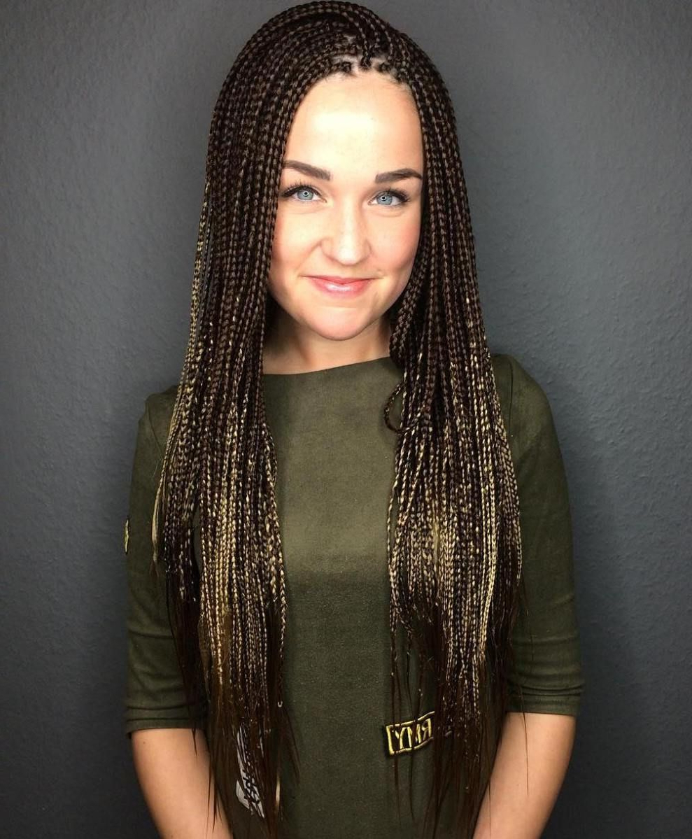 Trendy Layered Micro Box Braid Hairstyles For 40 Ideas Of Micro Braids And Invisible Braids Hairstyles In (View 7 of 20)