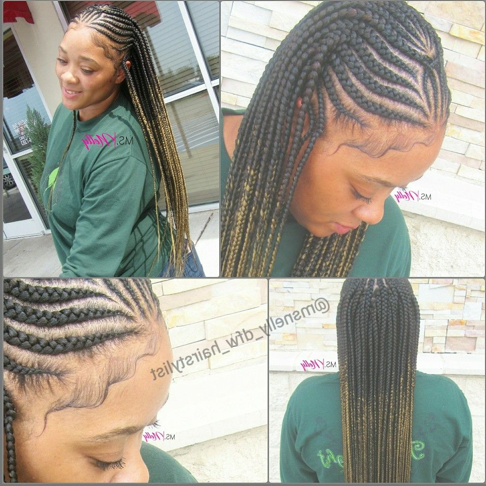 Tribal Braids, Feeder Braids, Small Feeders, Box Braids Within Most Up To Date Straight Mini Braids With Ombre (View 19 of 20)