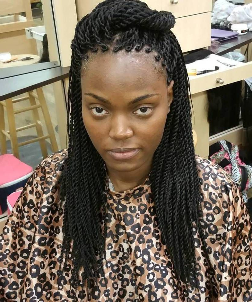 Twists With Latest Skinny Yarn Braid Hairstyles In A Half Updo (Gallery 2 of 20)