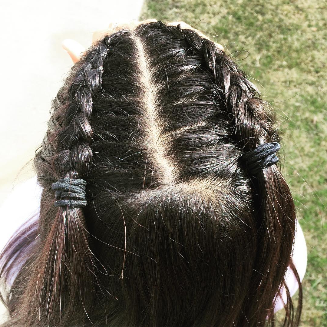 Widely Used Half Up, Half Down Braid Hairstyles Within 10+ Gorgeous Half Up Half Down Braids Hairstyles (Gallery 18 of 20)