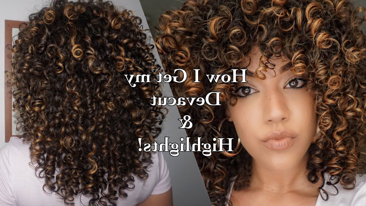 How I Get My Devacut & Pintura/ Balayage Highlights On Curly Intended For Popular Soft Highlighted Curls Hairstyles With Side Part (View 4 of 20)