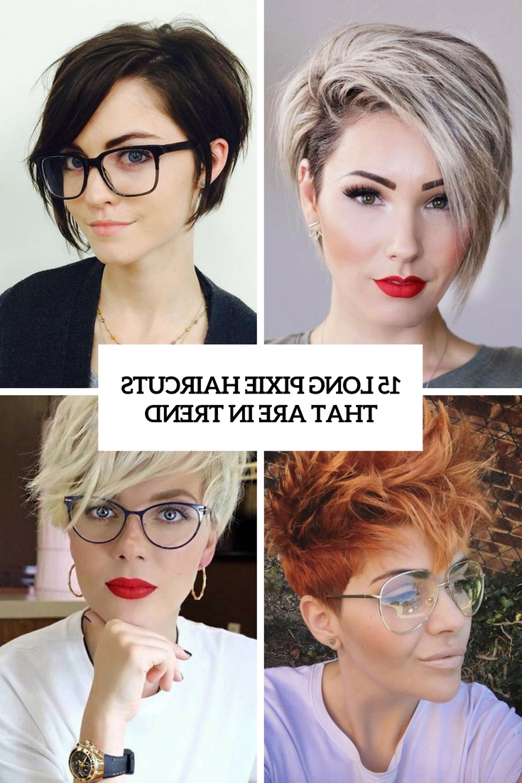 15 Long Pixie Haircuts That Are In Trend – Styleoholic For Bold Pixie Haircuts (View 7 of 20)