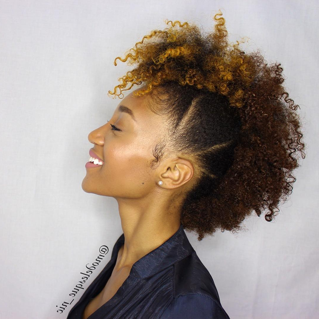 15 Stunning Natural Curly Hairstyles Every Woman Would Love With Regard To Widely Used Faux Mohawk Hairstyles With Springy Curls (View 10 of 20)