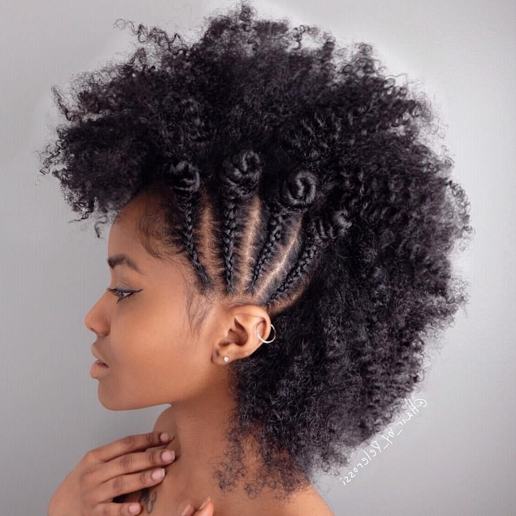 2020 Chic And Curly Mohawk Haircuts Pertaining To 10 Braided Natural Mohawk Hairstyles – Razanflight (View 4 of 20)