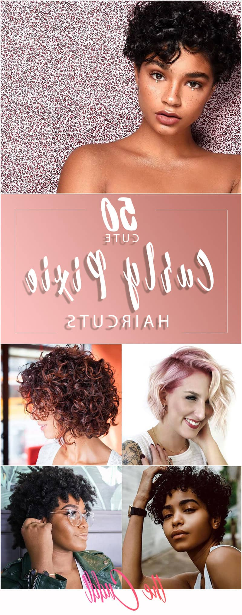 50 Bold Curly Pixie Cut Ideas To Transform Your Style In 2019 Inside Curly Pixie Haircuts With Highlights (View 6 of 20)