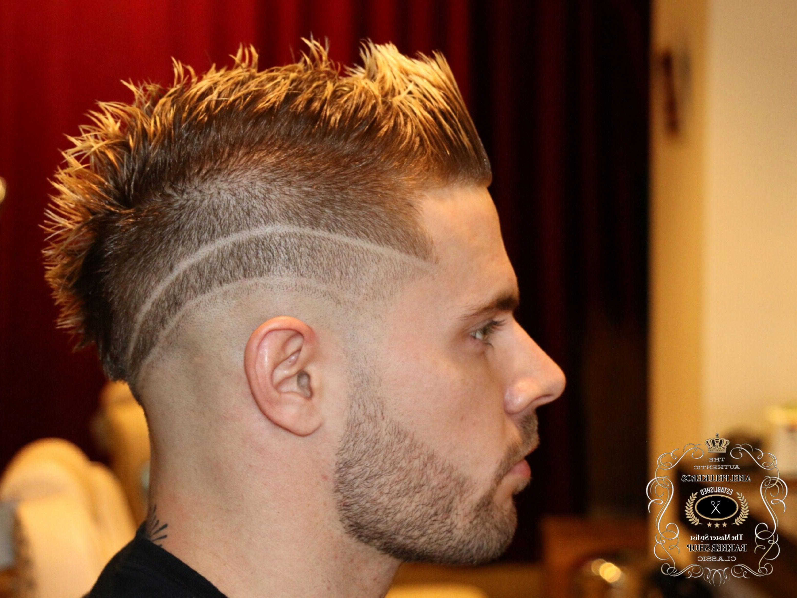 Hairstyles : Mohawk Hairstyle For Guys Awesome Hairstyles With Recent Fancy Mohawk Haircuts (View 7 of 20)