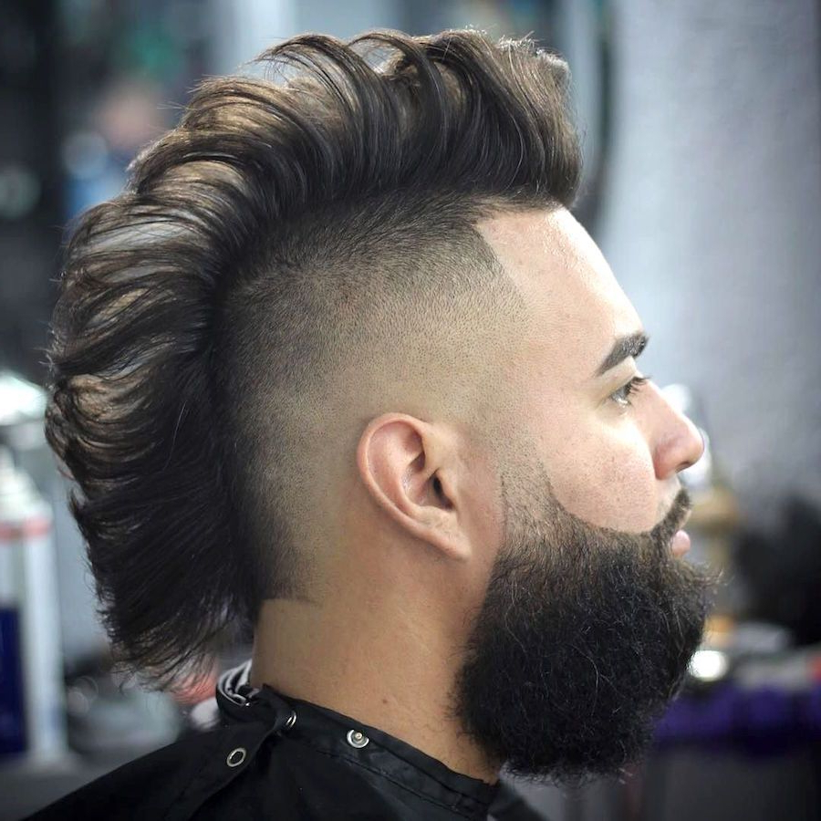 Mohawk Hairstyles Pertaining To Famous Long Straight Hair Mohawk Hairstyles (View 2 of 20)