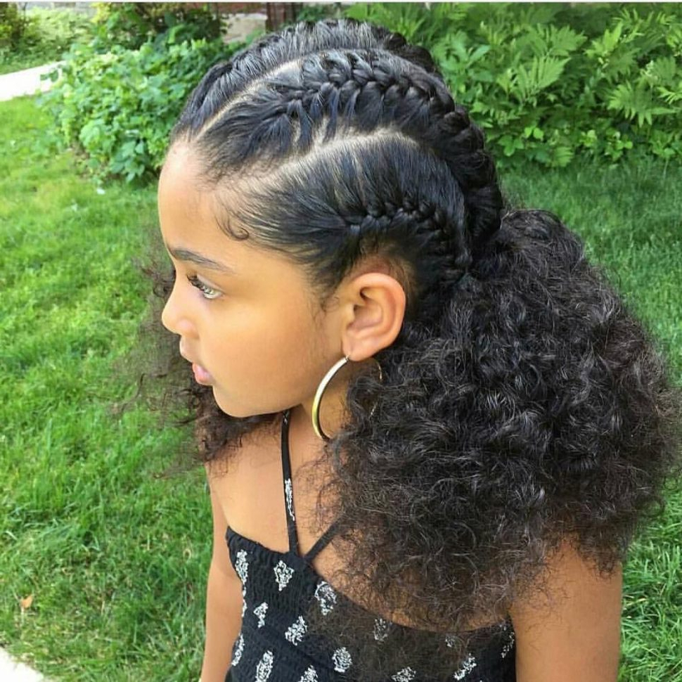 Most Current Big Braid Mohawk Hairstyles Regarding Hairstyles : Hairstyles For Black Hair Plaited Braided (View 12 of 20)