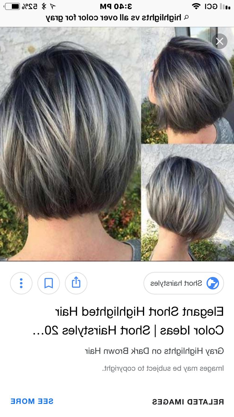 New Bob Grey Hair | Picks In 2019 | Gray Hair Highlights Within Highlighted Short Bob Haircuts (View 15 of 20)