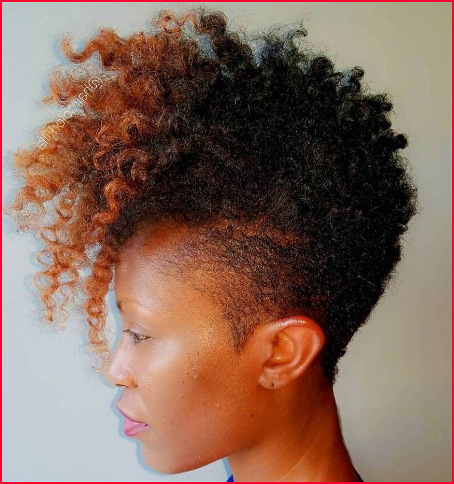 Popular Natural Curly Hair Mohawk Hairstyles Inside Beautiful Natural Mohawk Hairstyles Photos Of Braided (View 16 of 20)