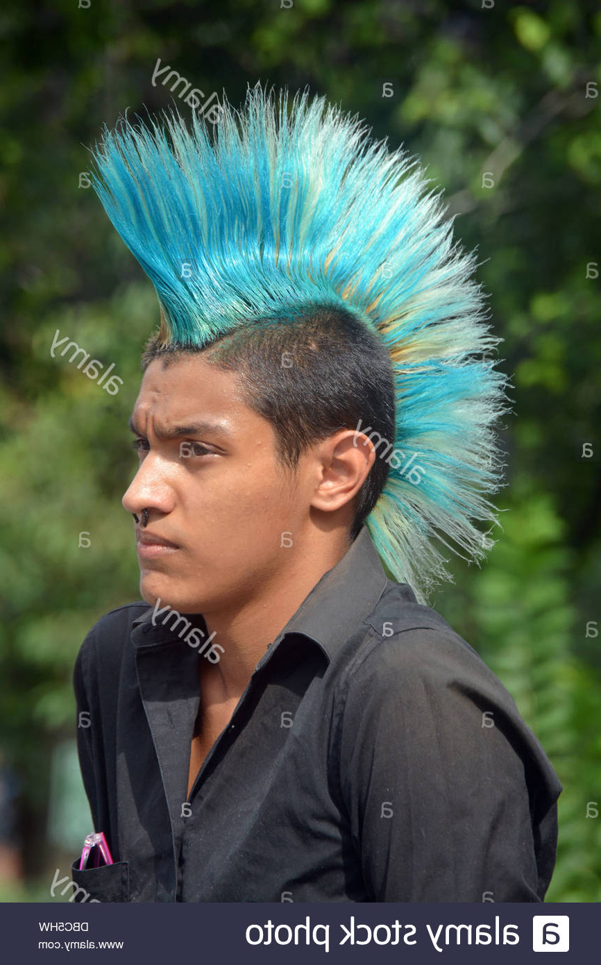 Recent Blue Hair Mohawk Hairstyles With Regard To Blue Hair Dye Stockfotos & Blue Hair Dye Bilder – Alamy (View 17 of 20)